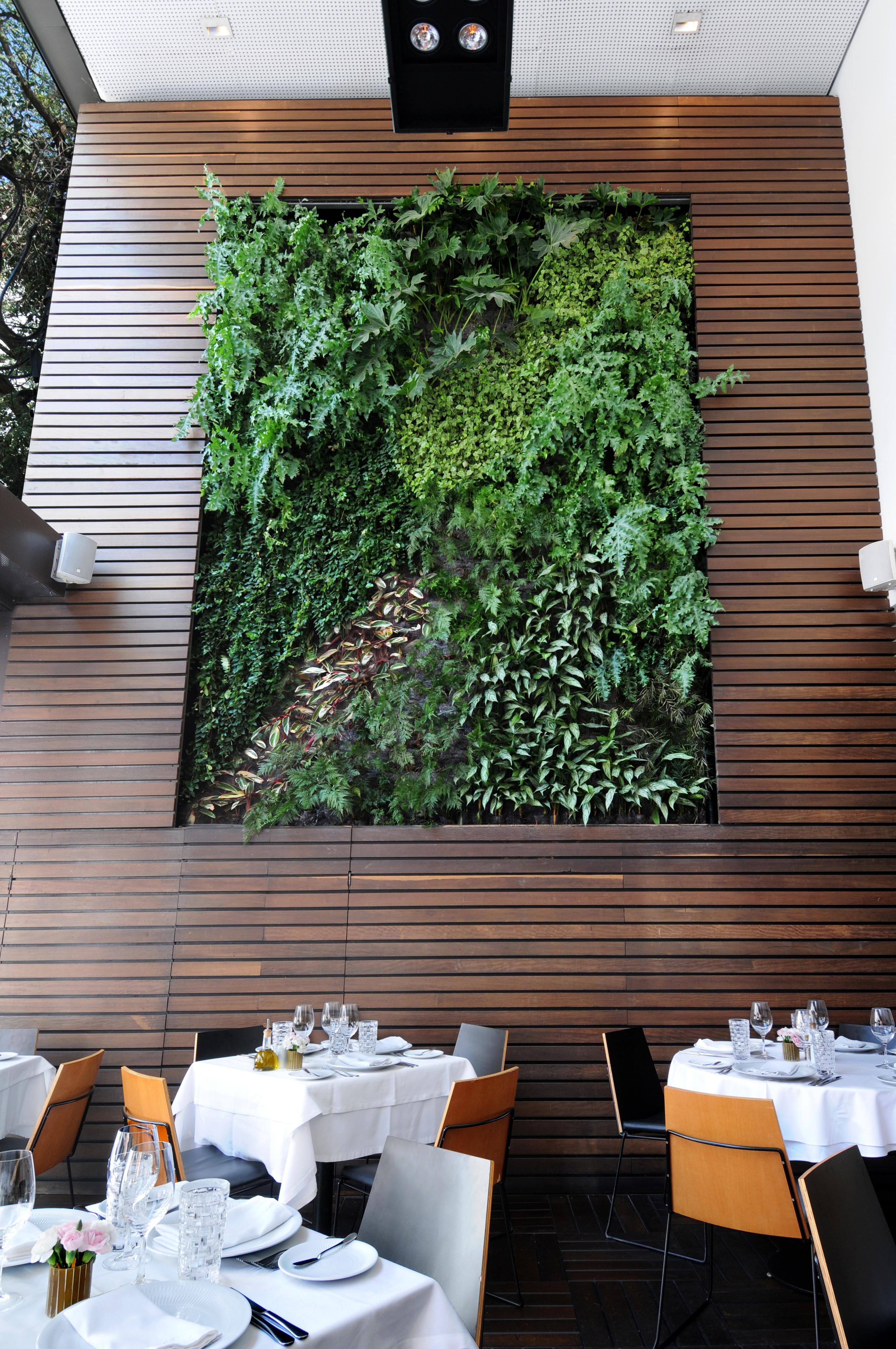 Natural Vertical Garden - interior 17