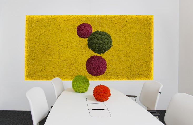 Preserved Moss Vertical Garden with colorful moss balls