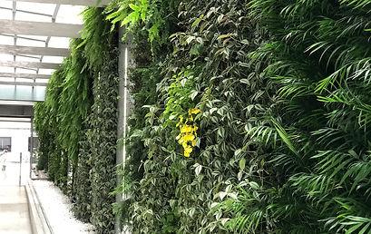 Natural Vertical Garden - interior 10.jp