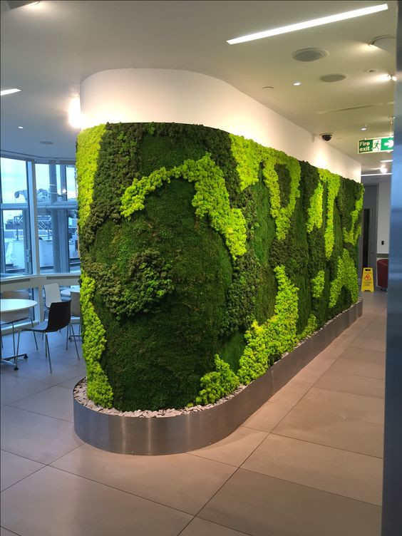 Preserved Moss Vertical Garden in corporate dining area.