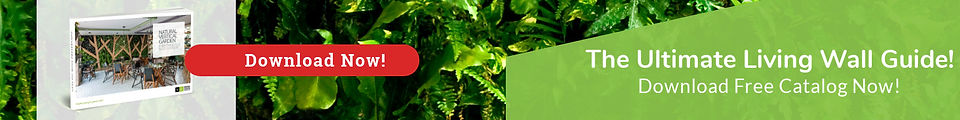 ENG-NATURAL-CATALOG-BANNER.jpg