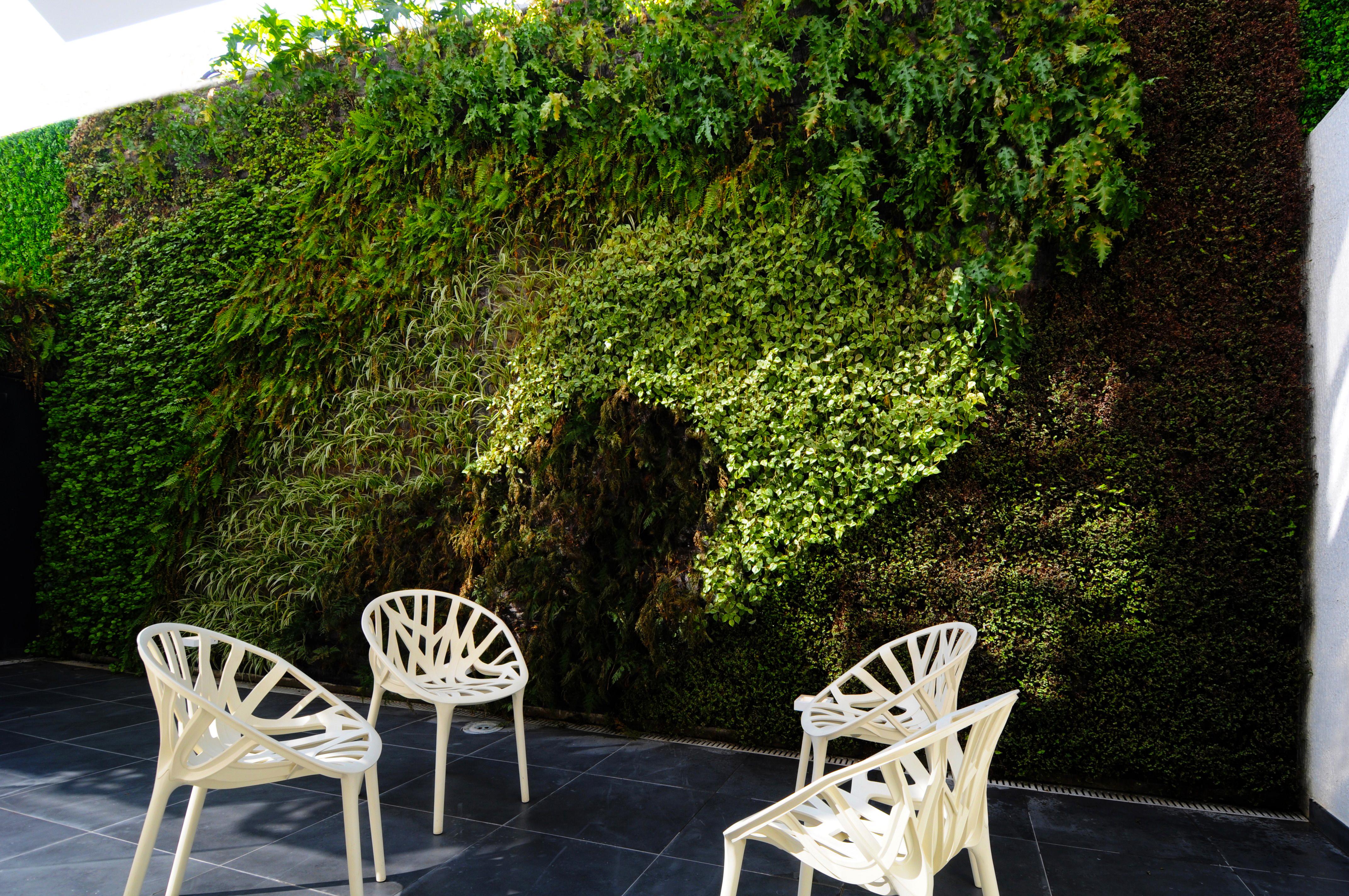 Natural Vertical Garden - exterior 02