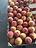 Peach & Apricot