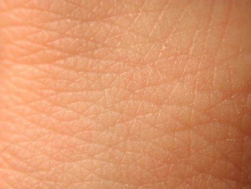 Skin & Nerves