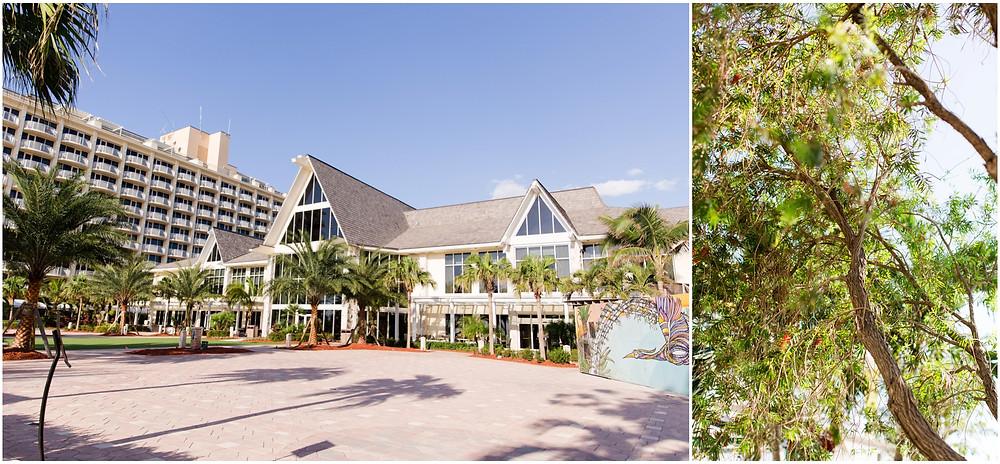 JW Marriott Marco Island Wedding reception