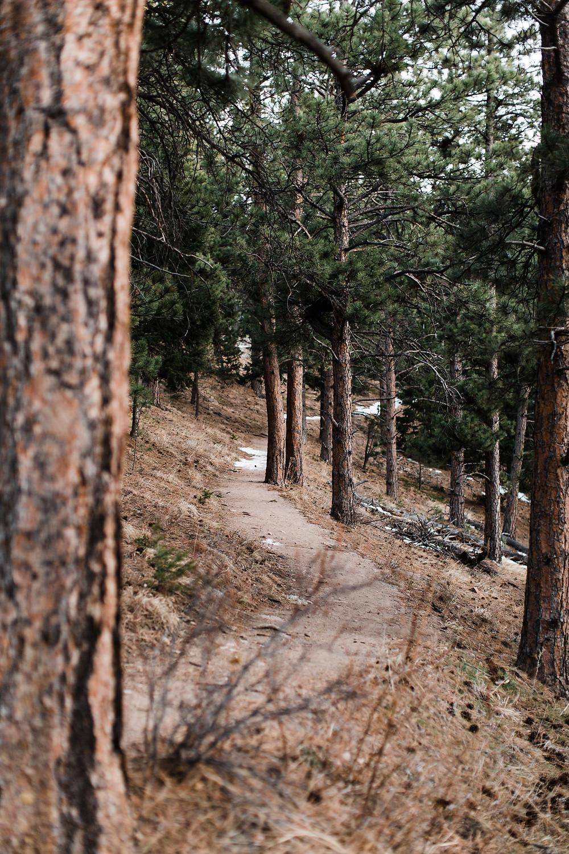 Boulder-Colorado-Wedding-Photographer