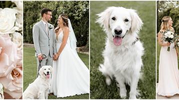Ritz Charles Wedding   Carmel Indiana   Marissa & Josh