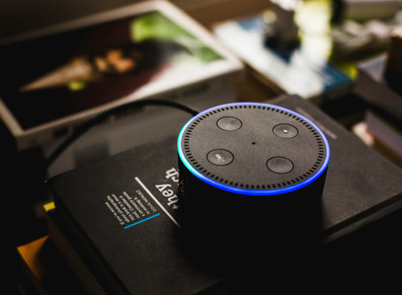 Wise Up on Smart Speakers