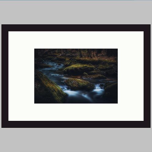 Mossy River Rock
