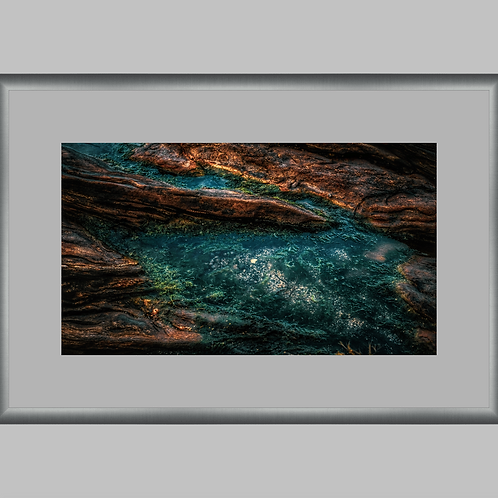 *Special Edition 24x36 Framed Reptilian Sea