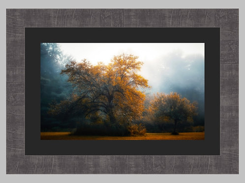 *Special Edition 16x24 Framed A Kiss Of Autumn