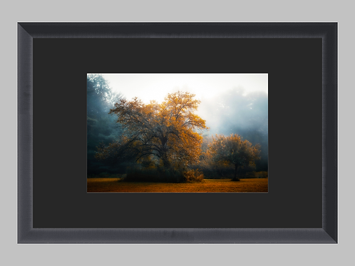 """*Special Edition Framed """"A Kiss Of Autumn"""""""
