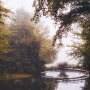 Cobb's Bridge