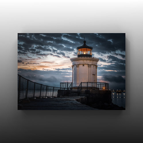 """*Limited Hand Signed & Numbered 8x12 """"Bug Light"""""""