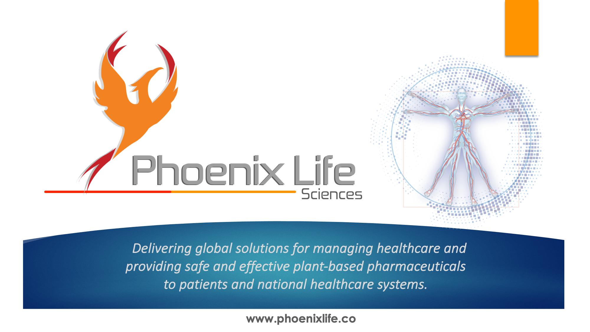 01 Phoenix Life Main Presentation 3.0 V3