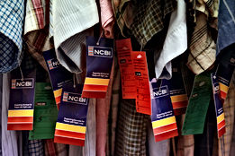 NCBI sustainable Fashion