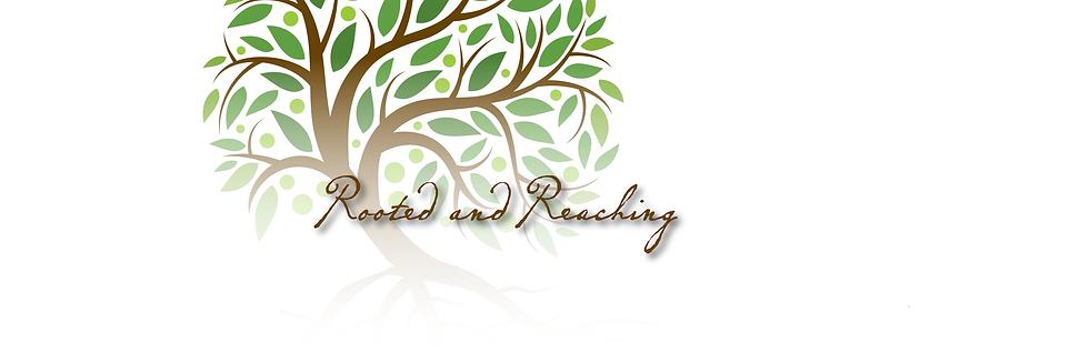RENOVATION-banner.png