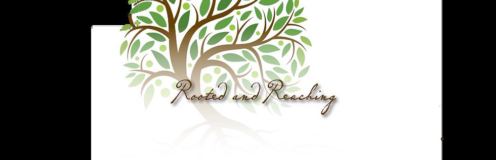 RENOVATION-banner2.png