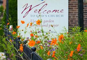 garden 6'.jpg