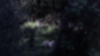 Screen Shot 2020-02-24 at 14.45.49.png