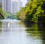 Pantanal Carioca: o Parque das Rosas, localizado na Barra da Tijuca, é o sonho de morada do carioca