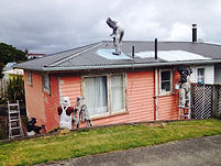 Wellington roof painter