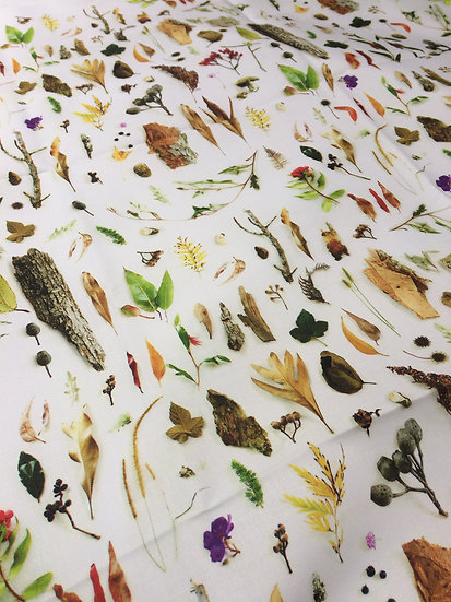 Australian Bushland Printed Cotton Fabric, Ships from USA
