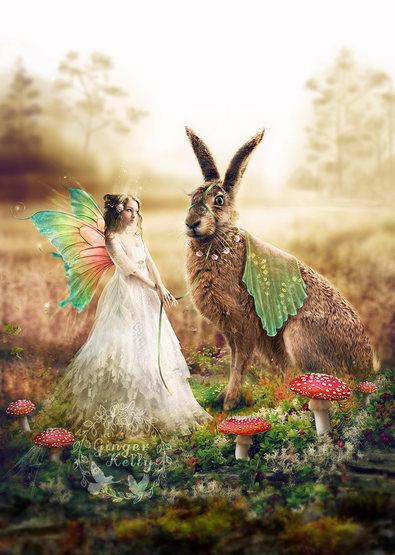Fairy Journey