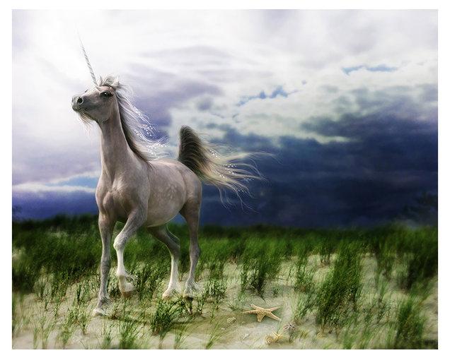 Stormhorse