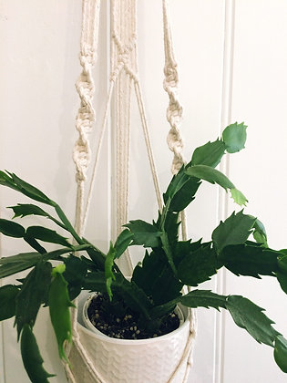 Macrame Plant Hanger - Medium Wall Hanging Planter, Natural Cotton Rope