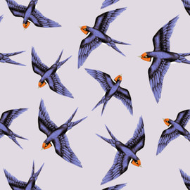 Swooping Swallows
