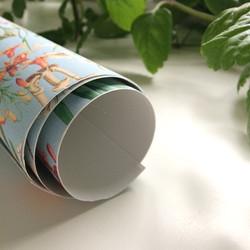 Peel & Stick wallpaper