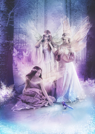 Fairy Friendship