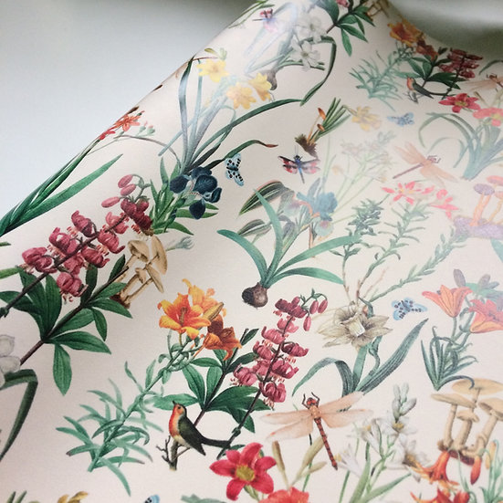 Dragonfly Garden Cream Botanical Drawer Liner Paper or Wallpaper