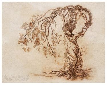 Hedgewitch