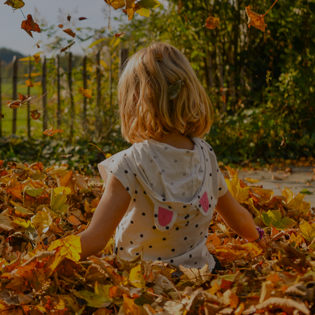 15 Fall Activities for Little Kids to Embrace the Season