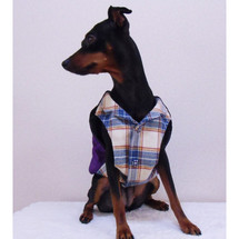 dogclothes-loveform_0002.jpg