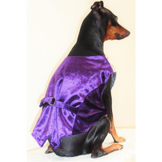 dogclothes-loveform_0002_1.jpg
