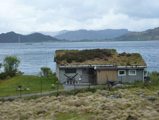 Green roof inspirations