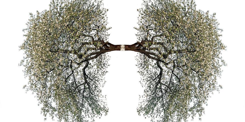 June's Virtual Breathwork - FREE WILL