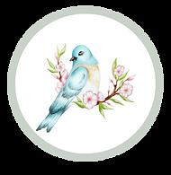 bluebird youtube logo.png