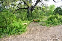 SV Nature Trail