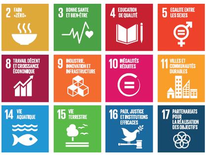 Elaboration d'un document stratégique pour la réalisation des ODD pour l'eau en Côte d'Ivoire (2030)