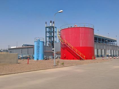 Plan de redressement du secteur de l'électricité du Tchad et de la SNE