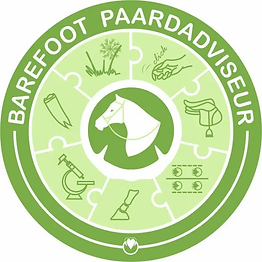 Barefoot paardadviseur.webp