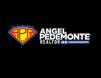 angel logo   11.png