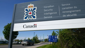 Ottawa urged to set up hotline for reporting intimidation, harassment by Chinese government agents