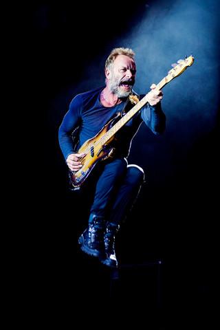 Sting (2008)
