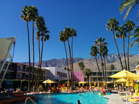 Good morning from the pool at the Saguaro, Palm Springs!