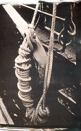 Cyanotype with Hedwig Heerschop | JULY 6